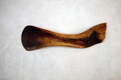 Pig bone spoon
