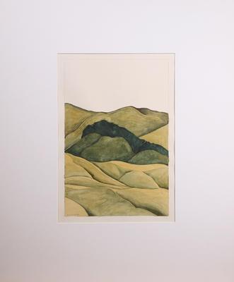 Hills of Tawa No 20