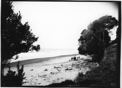 Glass plate negative – Opotiki coast