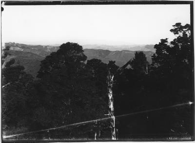Glass plate negative – Ruapehu from Taumarunui