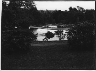 Glass plate negative – Howie Park, Morrinsville