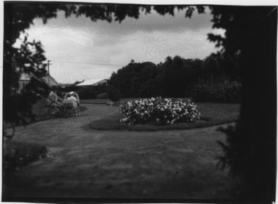 Glass plate negative – Public Gardens, Levin