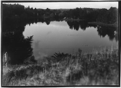 Glass plate negative – Virginia Lake, Wanganui
