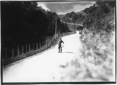 Glass plate negative – Wanganui to Patea Road