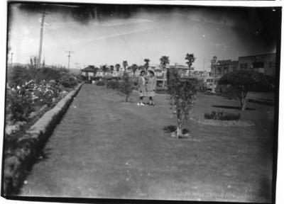 Glass plate negative – Herries Park, Tauranga
