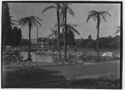 Glass plate negative – Sanatorium Grounds, Rotorua