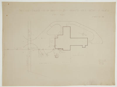 The New Zealand Co-op. Dairy Coy Ltd. Proposed Cheese Factory at Ngatea. Sheet No. 19. Site Plan.
