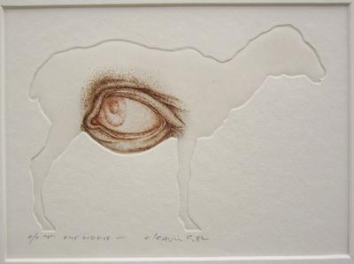 Ewe and eye