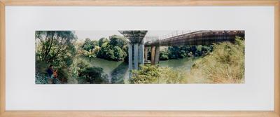 Claudelands Bridge and Rail Bridge; David Cook; Jan 1995; 1995/18/6