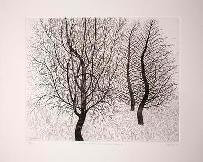 Silver Birch and Larch Trees II