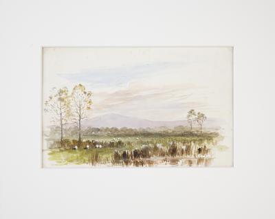 Uncle Jon's Farm, Waihou. 1897