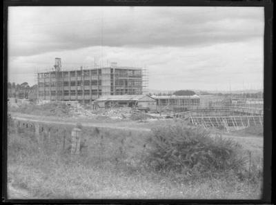 Glass plate negative – Hamilton Technical College