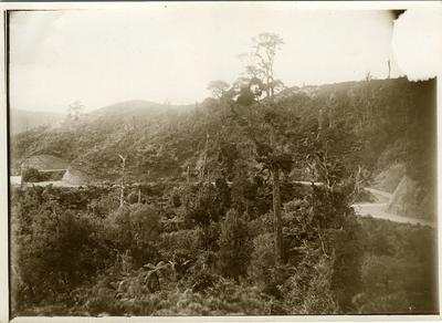Photograph - Frankton to Raglan road
