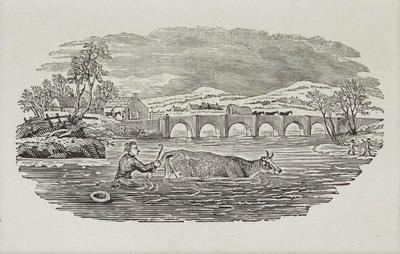 Fables [Man in River Holding Tail of Cow] Tailpiece to Swan Goose, History of British Birds Vol II
