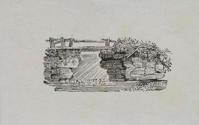 [Rustic Bridge] Tailpiece to Egyptian Goose, History of British Birds Vol II