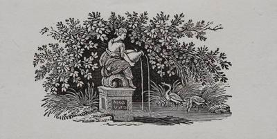 [Water fountain, birds and stream] Tailpiece to Avoset, History of British Birds Vol II