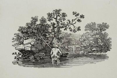 Fishing Tailpiece to Smew, History of British Birds Vol II