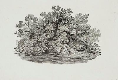 Fishing Tailpiece from Heron, History of British Birds Vol II