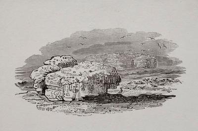 Sea, Birds, Nests & Rocks Tailpiece to Mallard, History of British Birds Vol II; Thomas Bewick; 1804; 1972/47/56