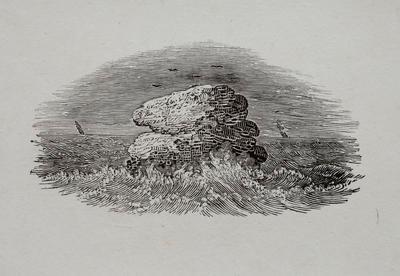 Sea, Birds, Nests & Rocks Tailpiece to the Wagel, History of British Birds Vol II; Thomas Bewick; 1826; 1972/47/59