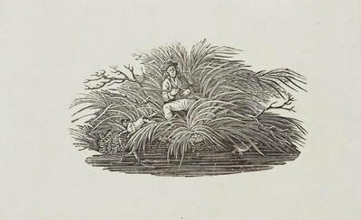 [Hunter At Watch] Tailpiece to Kittewake, History of British Birds Vol II