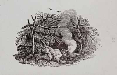 Country Life - Starting A Fire. Tailpiece to Coot, History of British Birds Vol II (6th)