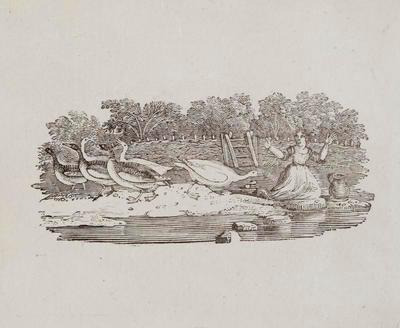 Woman with Geese Tailpiece to Little Stint, History of British Birds Vol II