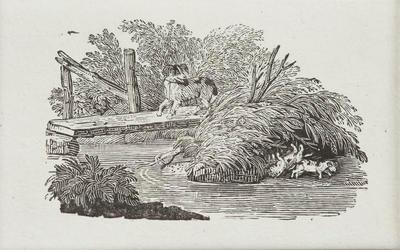 [Mother dog watching puppies playing]Tailpiece to Contents, History of British Birds Vol