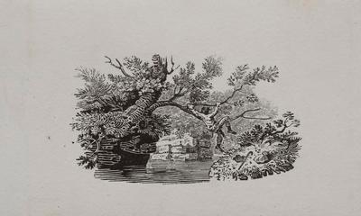 Man Climbing Tree to Cross Over River. Tailpiece to Wagel, History of British Birds Vol