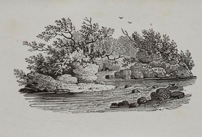 River Scene Tailpiece to Shearwater, History of British Birds Vol II