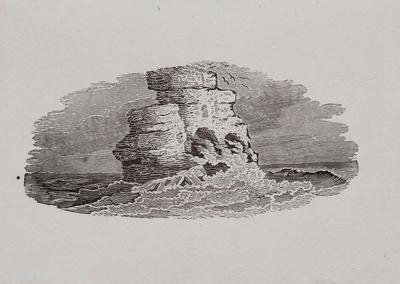 Sea, Birds & Rocks Tailpiece to Of The Phalarope, History of British Birds Vol II (6th)
