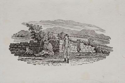 Farming;Tailpiece to Black Guillemot, History of British Birds Vol II