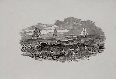 Sea, Birds & Ships Tailpiece to Red-Breasted Goose, History of British Birds Vol II