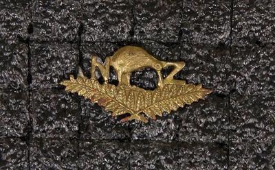 Badge – New Zealand Reinforcements