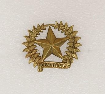 Hat badge – 17th Ruahine Regiment
