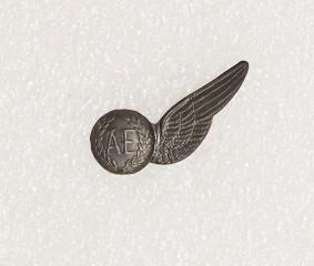 Badge – Air Electrician