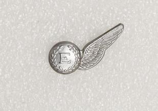 Badge – Royal New Zealand Air Force, Engineer