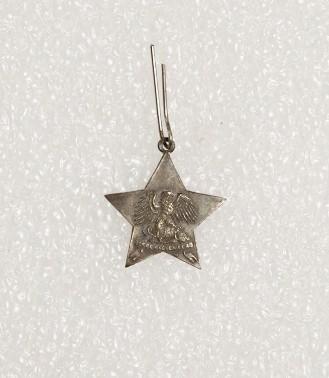 Badge – Italian Star