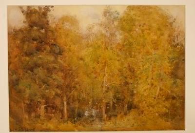 Untitled (bush scene)
