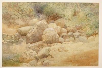 Untitled [river bank and boulders]; Frank Wright; 1908; 1970/290/1
