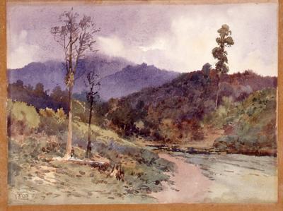 Waikato Bush Scene; Frank Wright; Unknown; 1996/4/1
