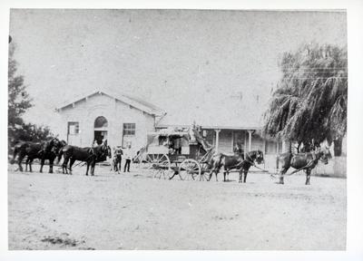 Photograph - Post Office, Hamilton
