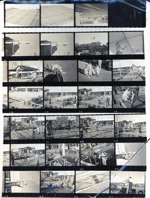 Contact sheet of photograph - Garden Place being prepared for celebration for Queen Elizabeth II's coronation celebrations.