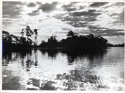Photograph – Hamilton Lake