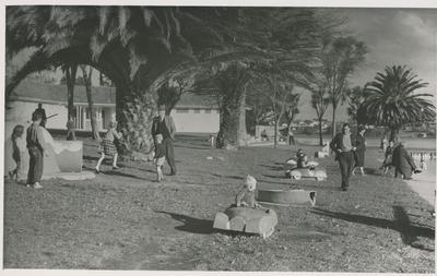 Photograph – Hamilton Lake playground