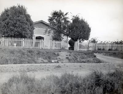 Photograph - Garden Place area, Hamilton