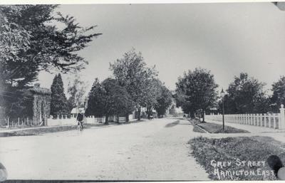 Photograph – Grey Street, Hamilton East