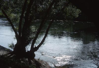 Slide - Waikato River