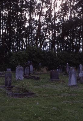 Slide - Whitiora Cemetery, Hamilton