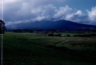 Slide - Mount Pirongia